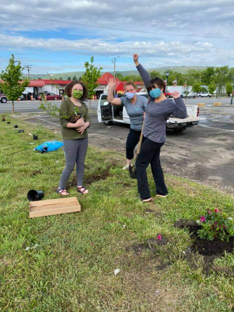 Planting trees at pop-up Art Plaza